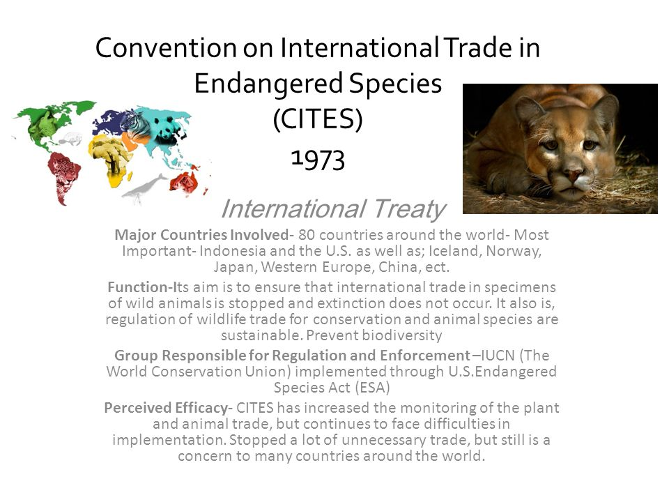 Convention on International Trade in Endangered Species (CITES) 1973