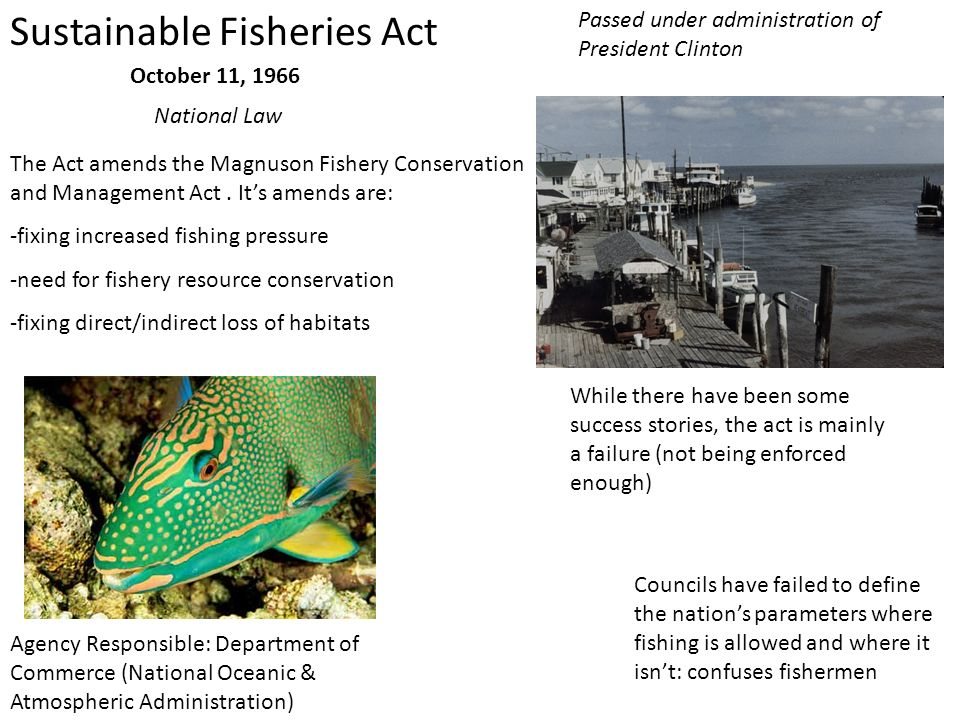 Sustainable Fisheries Act
