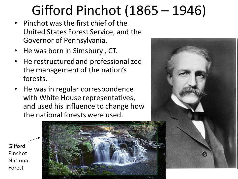 Gifford Pinchot (1865 – 1946) Pinchot was the first chief of the United States Forest Service, and the Governor of Pennsylvania.