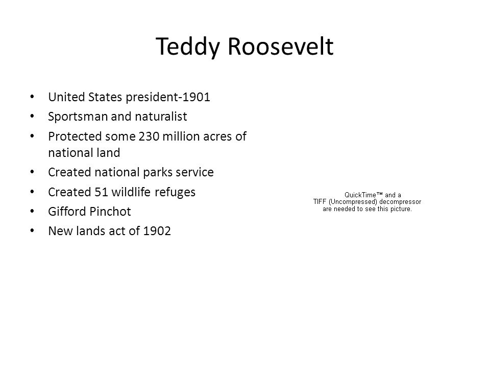 Teddy Roosevelt United States president-1901 Sportsman and naturalist