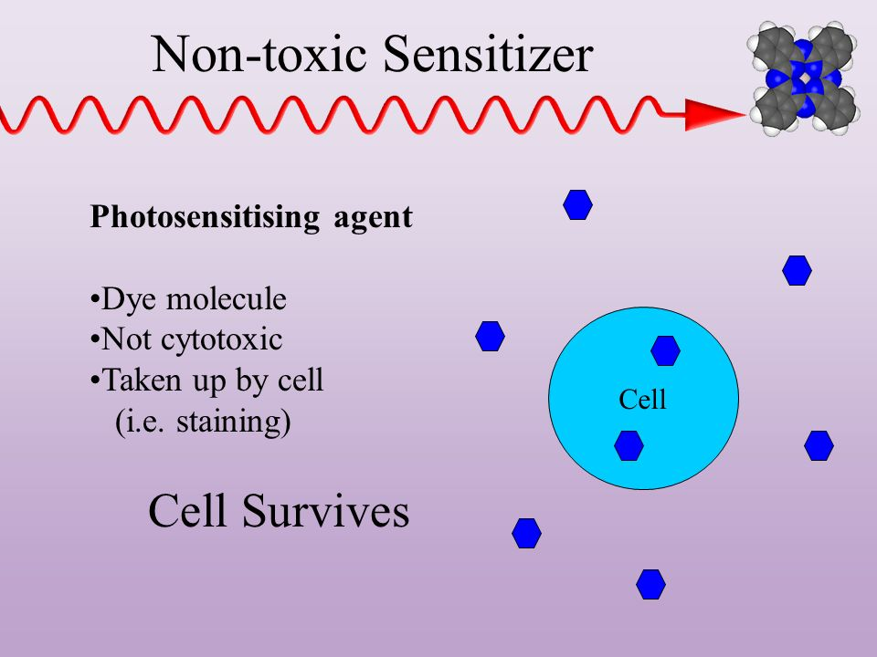Non-toxic Sensitizer Cell Survives Photosensitising agent Dye molecule