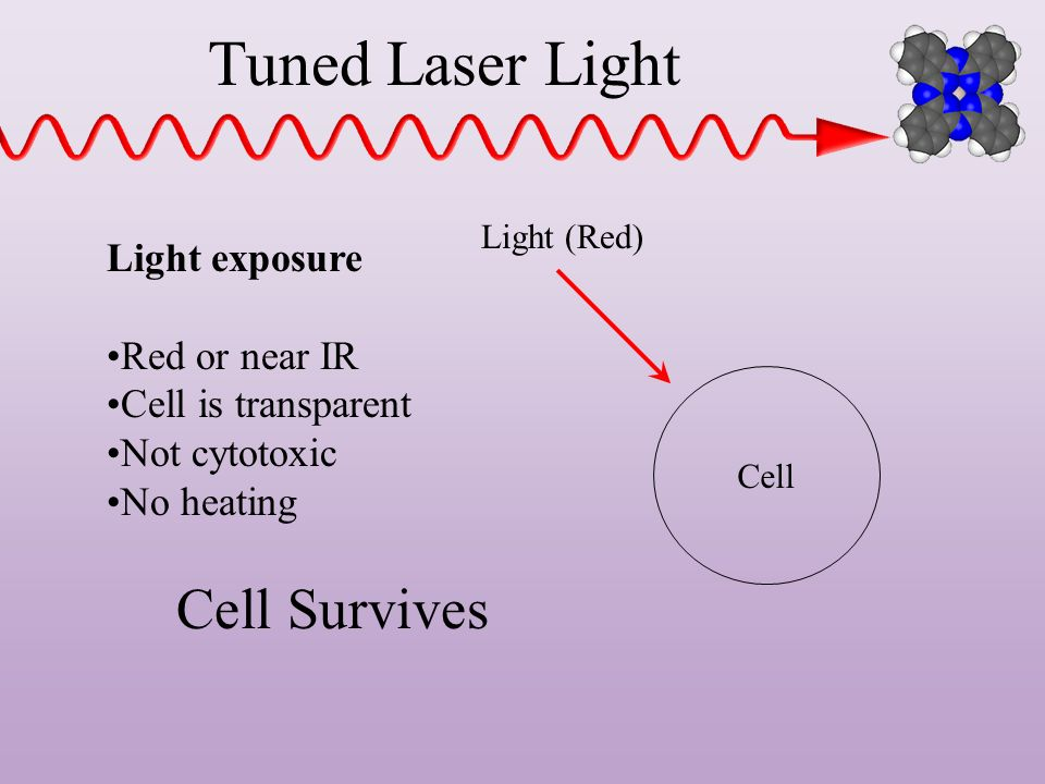 Tuned Laser Light Cell Survives Light exposure Red or near IR