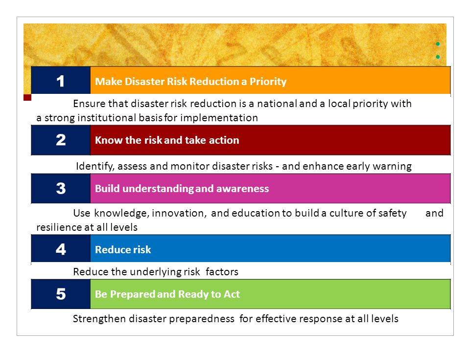 Addressing the Risks & Vulnerabilities of Clients thru DRR ...