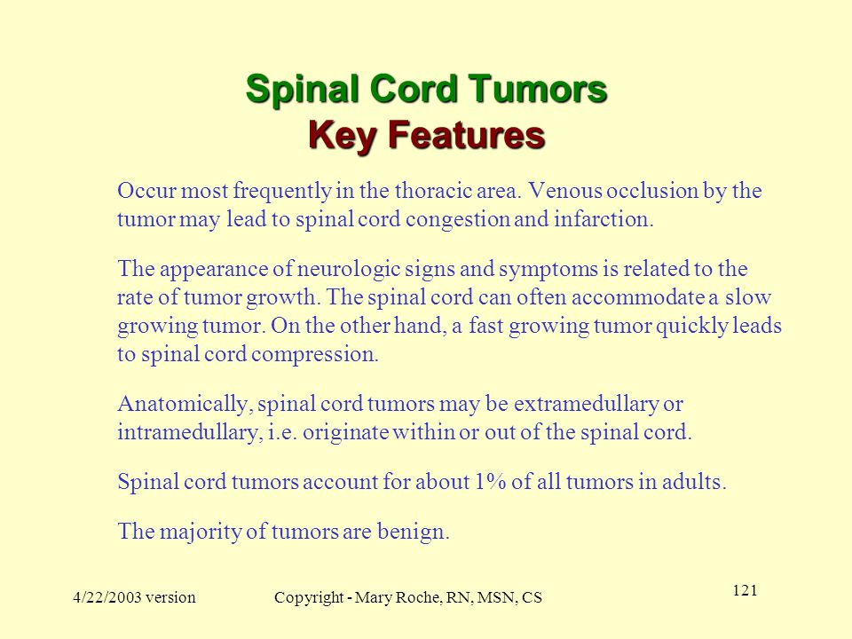 Spinal Cord Tumors Key Features
