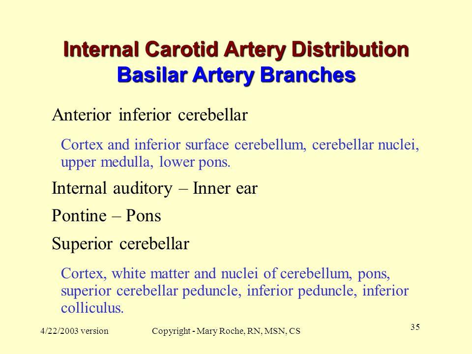 Internal Carotid Artery Distribution Basilar Artery Branches