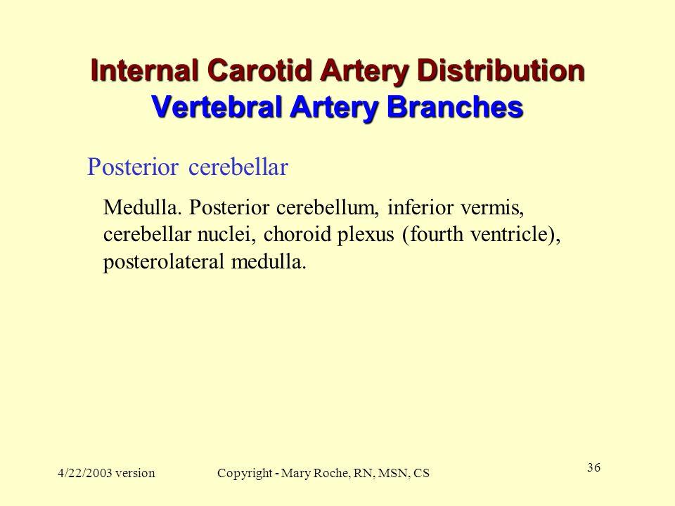 Internal Carotid Artery Distribution Vertebral Artery Branches