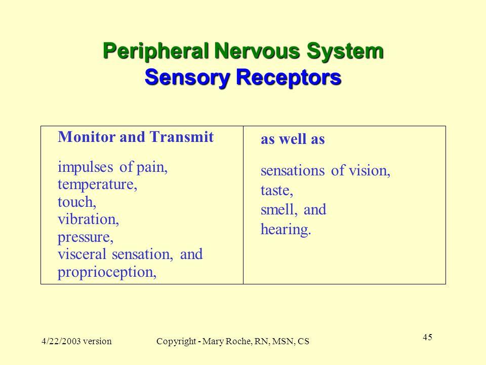 Peripheral Nervous System Sensory Receptors