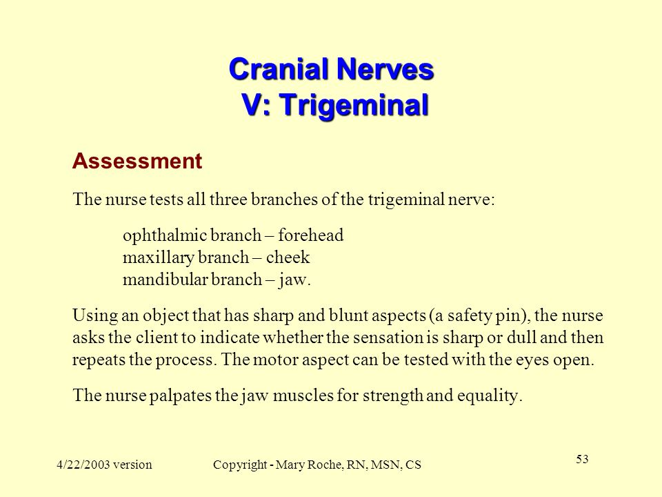 Cranial Nerves V: Trigeminal