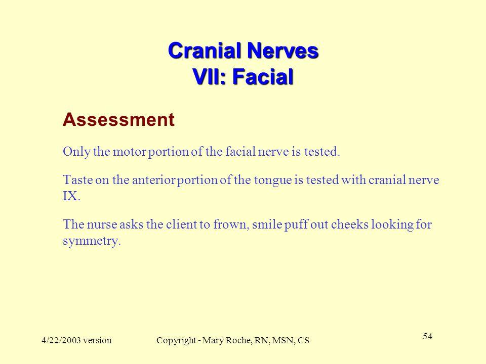 Cranial Nerves VII: Facial