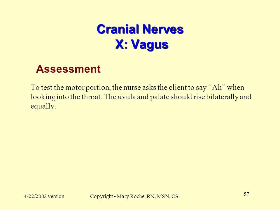 Cranial Nerves X: Vagus