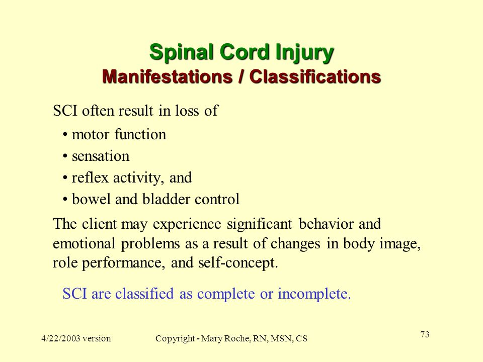 Spinal Cord Injury Manifestations / Classifications