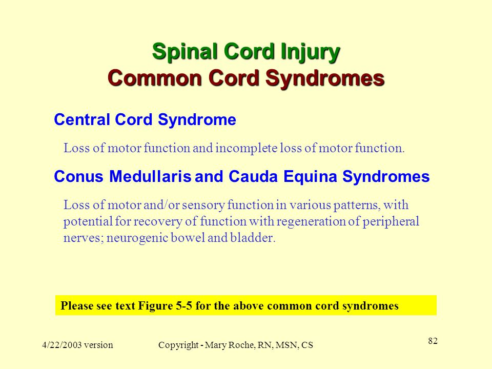 Spinal Cord Injury Common Cord Syndromes