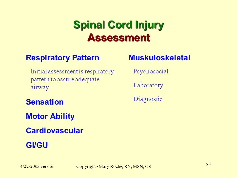 Spinal Cord Injury Assessment