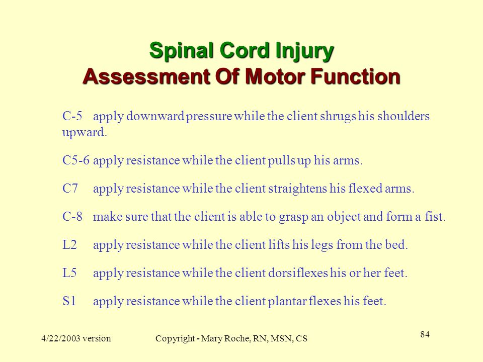 Spinal Cord Injury Assessment Of Motor Function