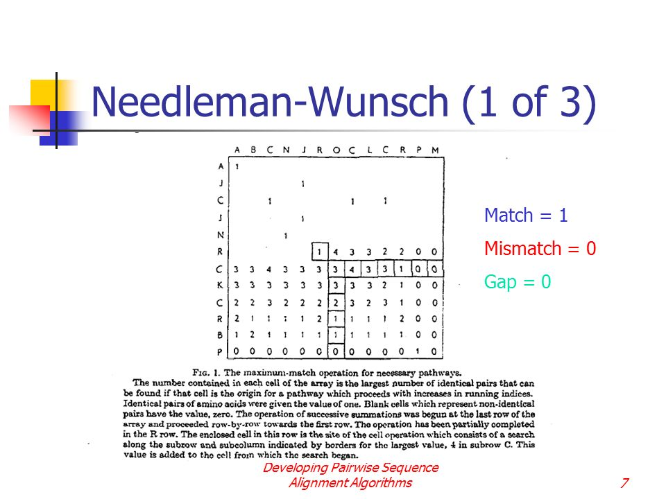 Needleman-Wunsch (1 of 3)