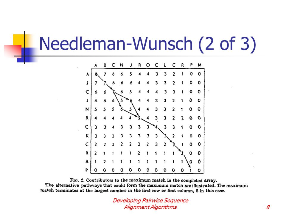 Needleman-Wunsch (2 of 3)