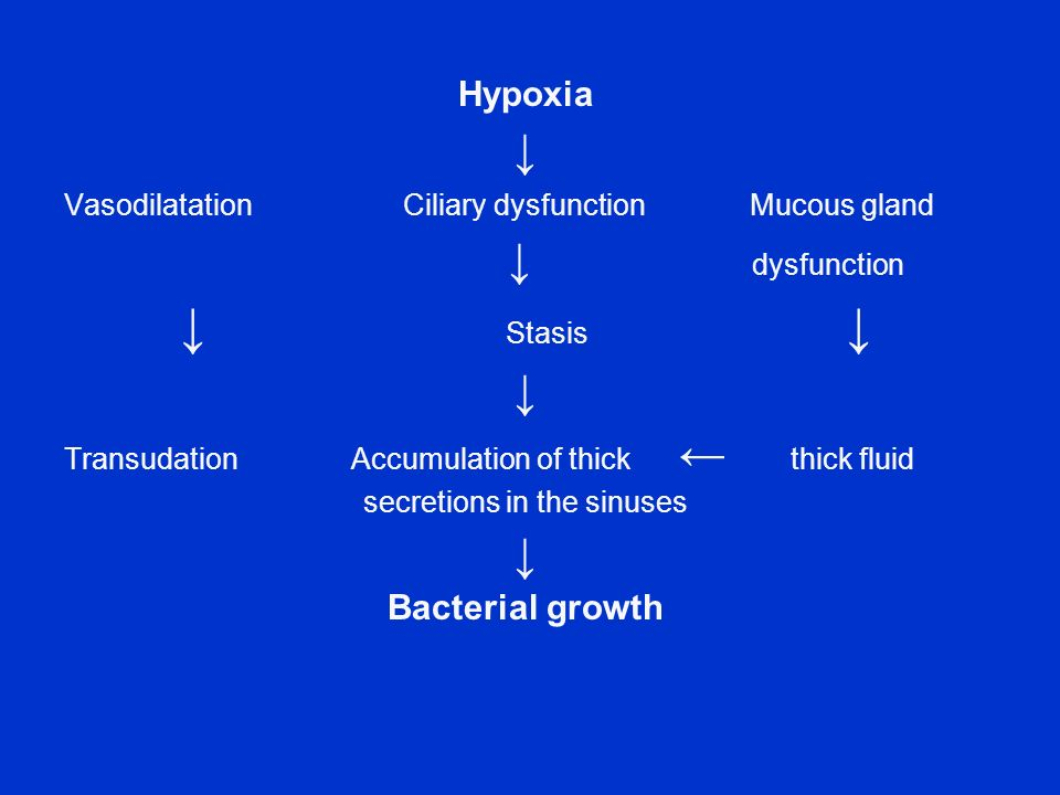 secretions in the sinuses
