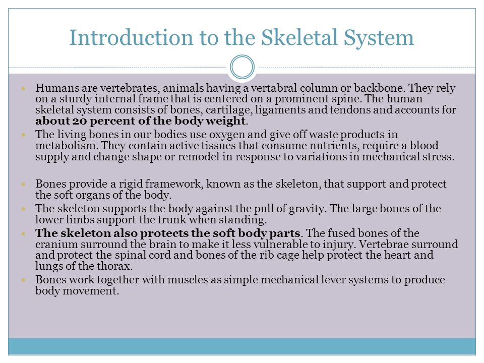 introduction to bones in the body Introduction who are we for example, the long bones appear in both the skeletal and the lymphatic these human body systems are merely.