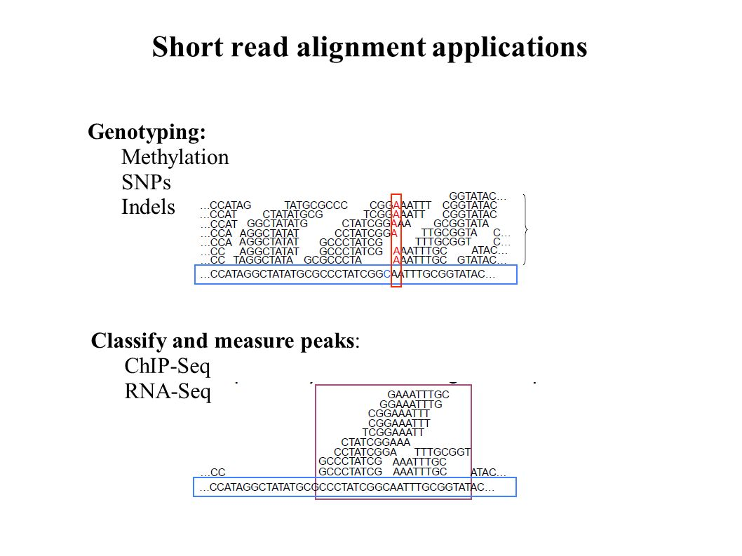 pdf Static Analysis: 10th International Symposium, SAS 2003 San