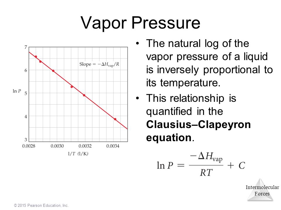 vapor pressure and intermolecular forces relationship quiz