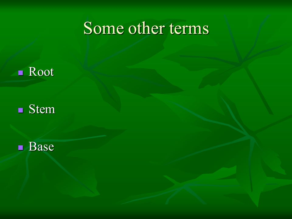 Some other terms Root Stem Base