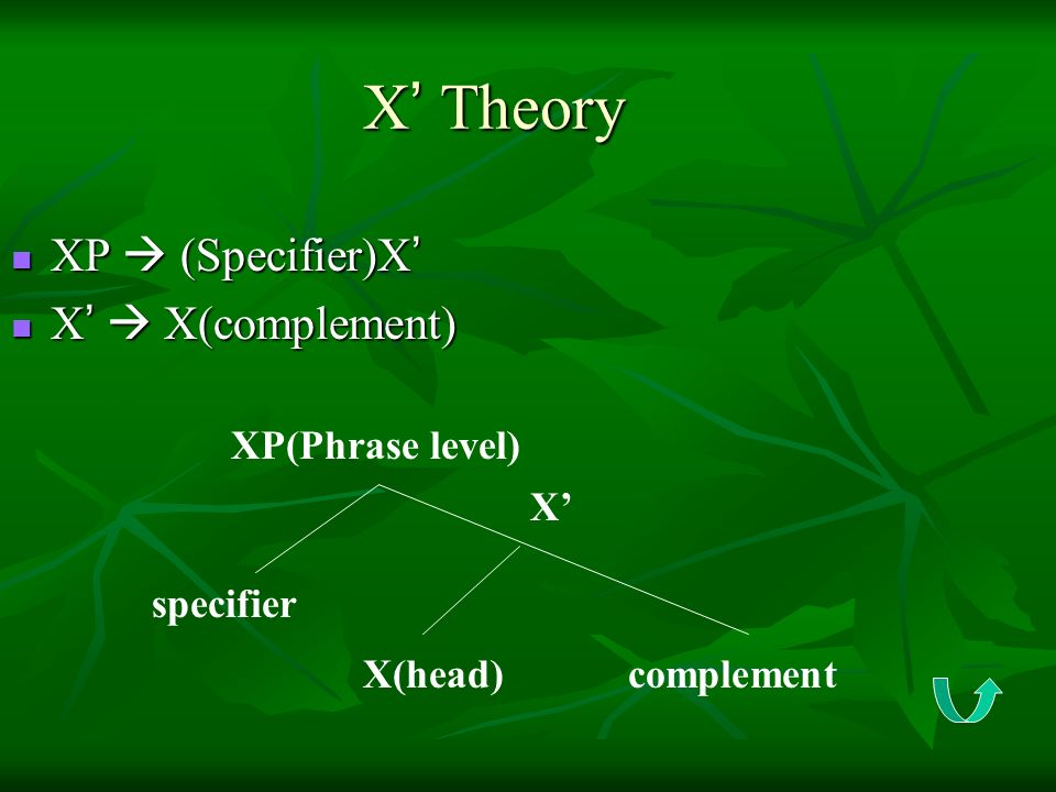 X' Theory XP  (Specifier)X' X'  X(complement) XP(Phrase level) X'