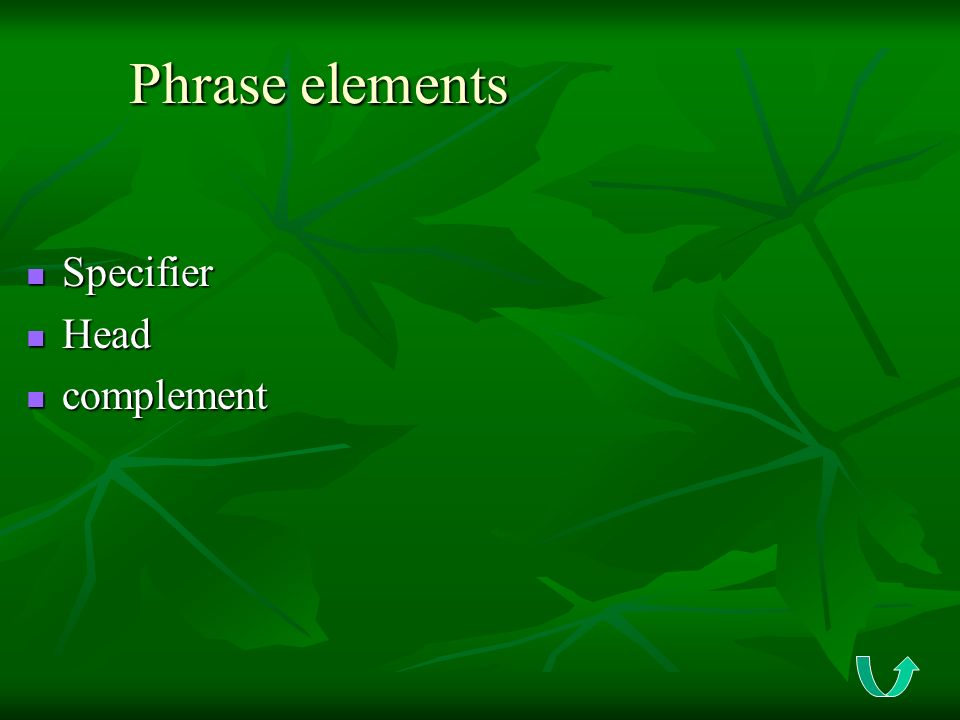 Phrase elements Specifier Head complement
