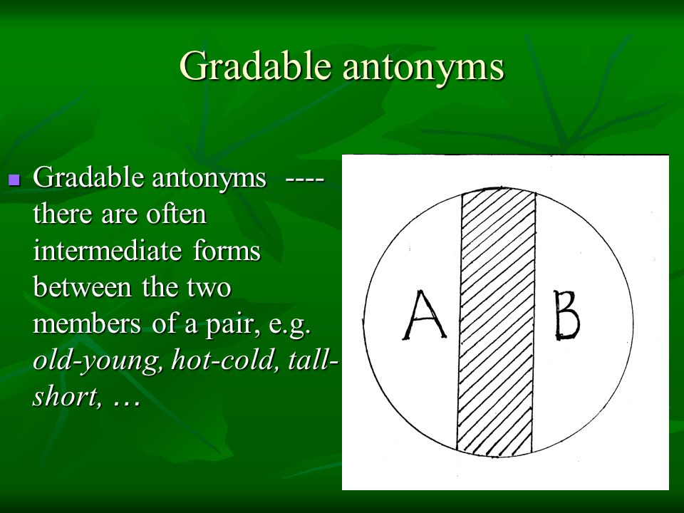 Gradable antonyms