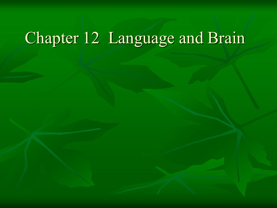 Chapter 12 Language and Brain