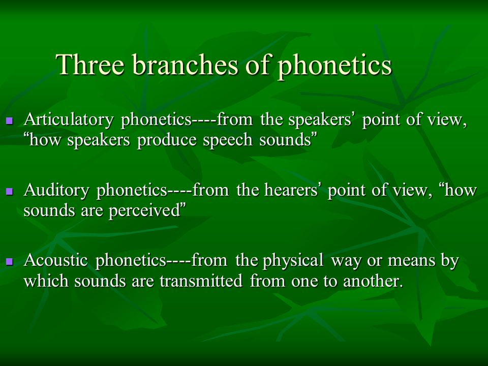 Three branches of phonetics