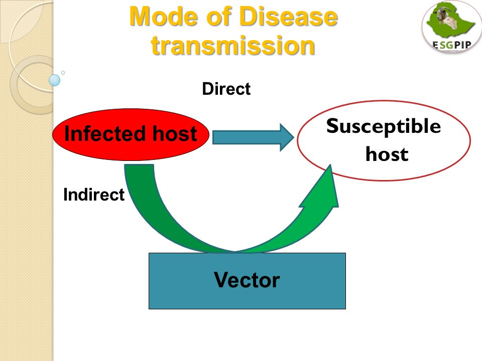 Seep And Goat Health And Disease Control Part I Ppt Download