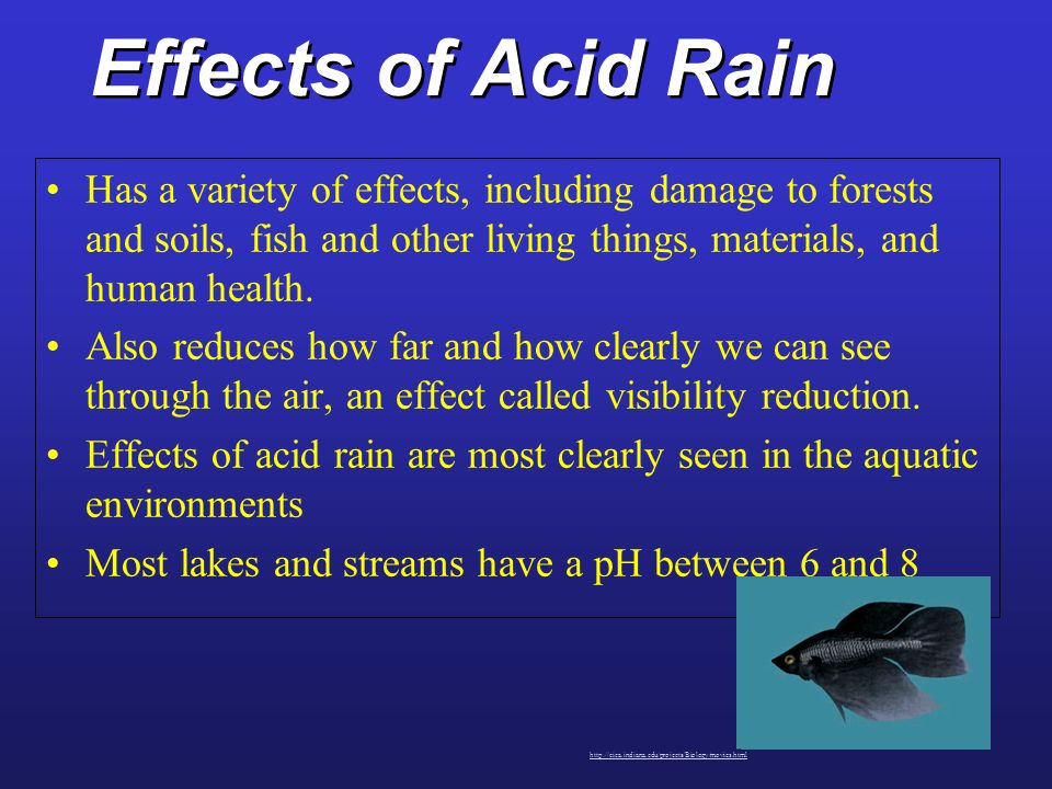 an examination of acid rain and its effects on the environment Acid rain is a serious environmental problem with impact on agriculture, forestry  and human health plants generate several  range of ph values that depend on  the location and its  further examined whether acid rain effects and induces.