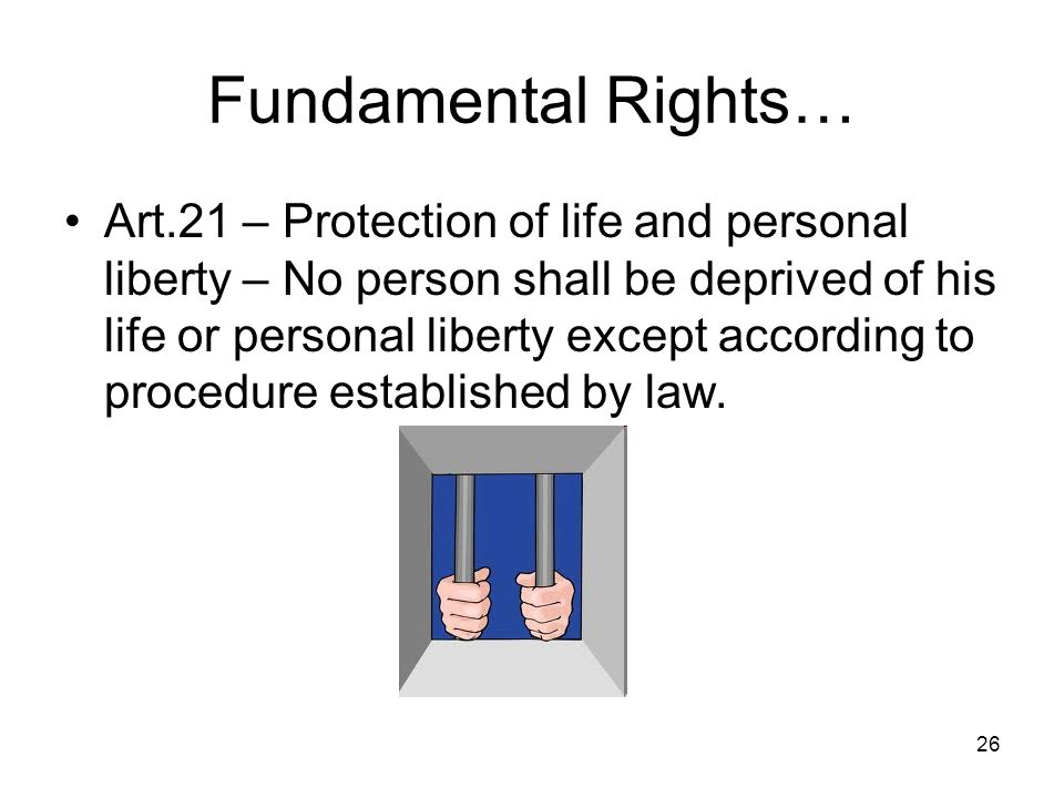 Constitutional aspects ppt video online download for Liberty home protection