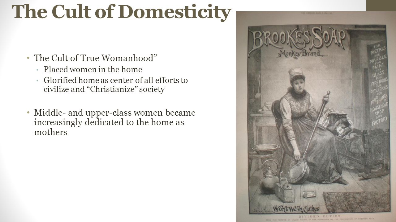 the cult of domesticity and true womanhood essay