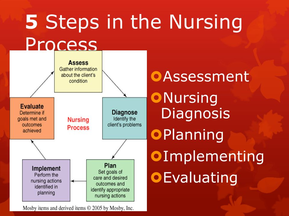 Nursing Essay On Nursing Process Slide Share