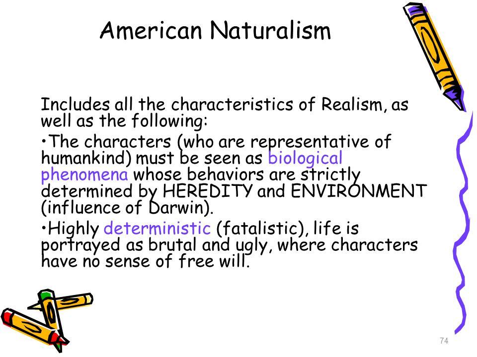 brief survey of american literature