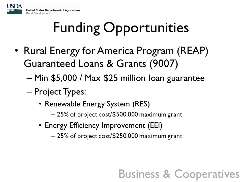 Small Business Administration 7(a) Loan Guaranty Program