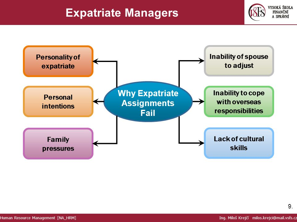 expatriate assignment