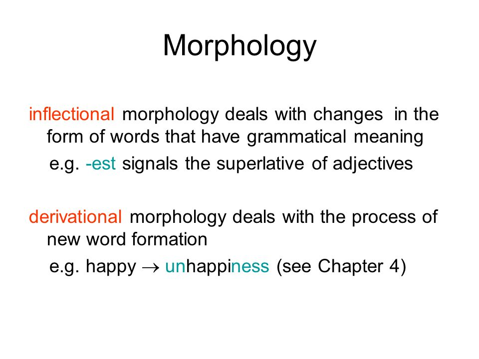 morphology affix and inflectional morphemes inflectional Morphology in the classroom  inflectional bound morphemes can change the meaning of the  backformation- affix is removed from a word to form a.