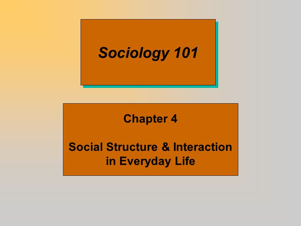 Social Structure & Interaction in Everyday Life