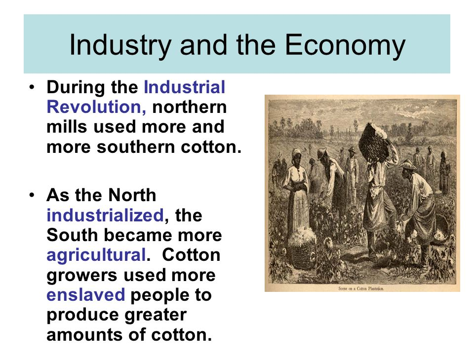 Industry and the Economy