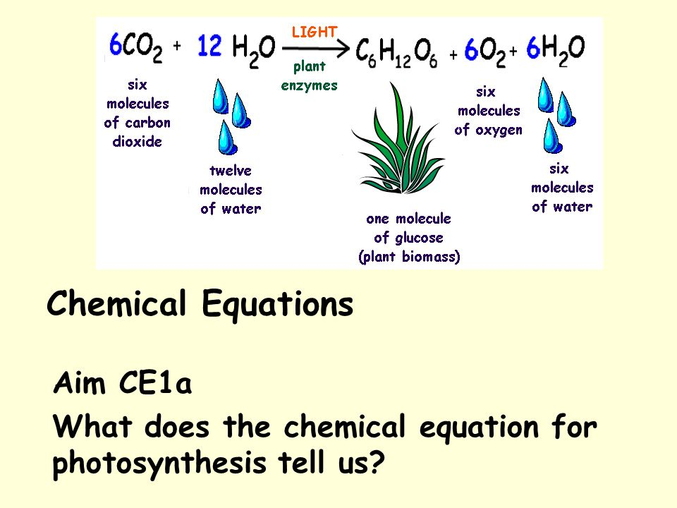 photosynthesis equation The basic photosynthesis equation the key chemical pathway in photosynthesis  is the conversion of carbon dioxide (co2 from the air) and water (h2o) into.
