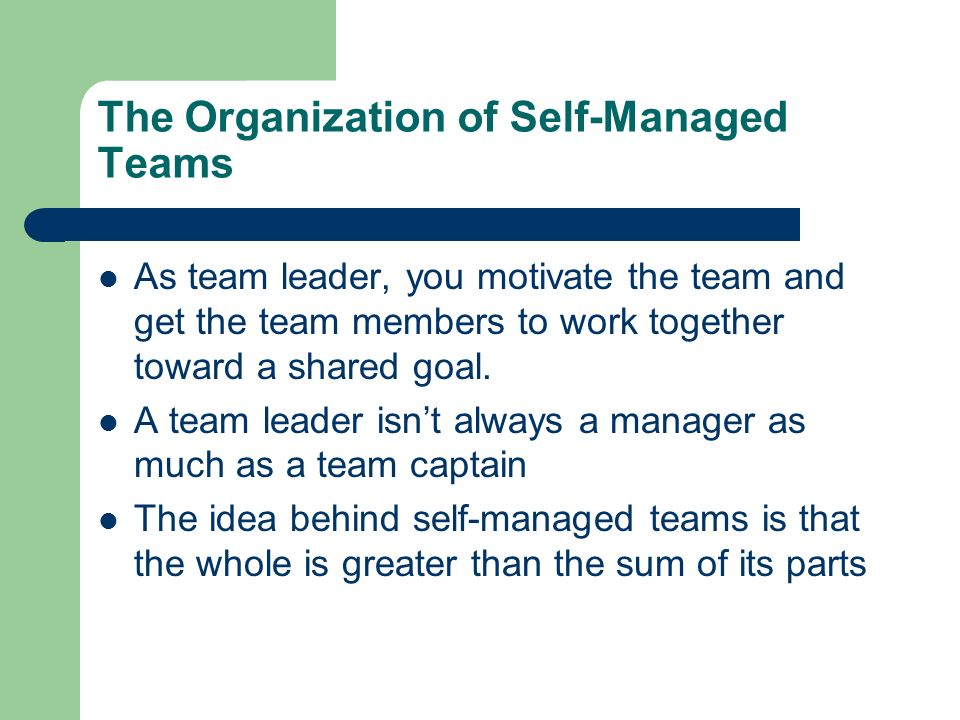 the importance of leadership in a self managed work team This literature survey considers whether the self-directed teams are the promising  type of  to grow such jelled teams, managers or team leaders should create an   has crucial importance while performing a work as a team.