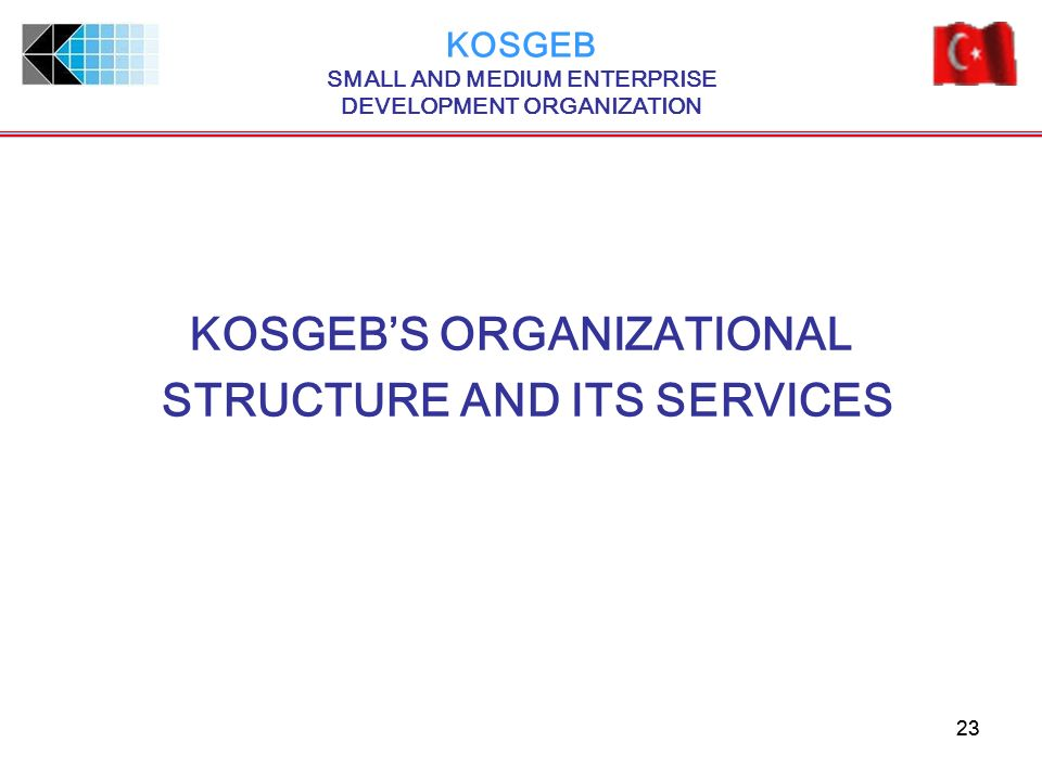 KOSGEB'S ORGANIZATIONAL STRUCTURE AND ITS SERVICES