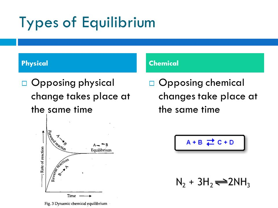 Types of Equilibrium Physical. Chemical. Opposing physical change takes place at the same time.
