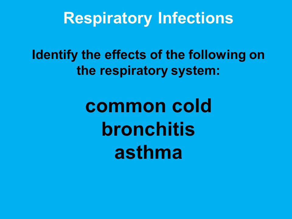 Respiratory Infections Identify the effects of the following on the respiratory system: common cold bronchitis asthma
