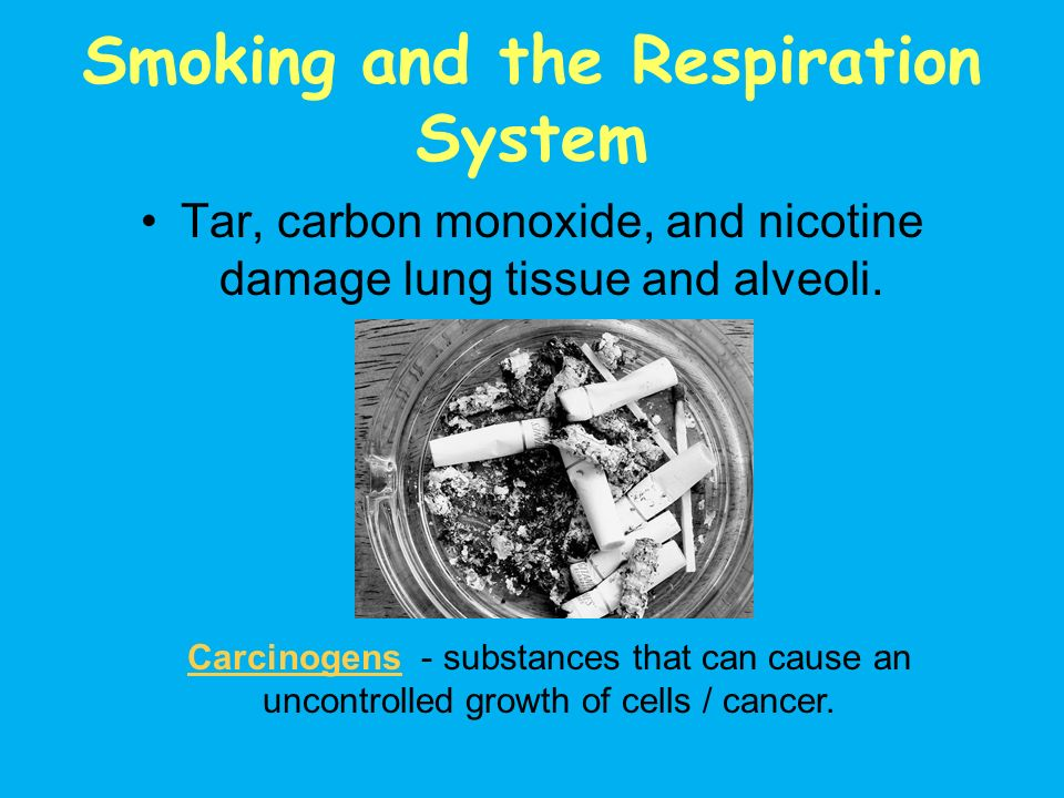 Smoking and the Respiration System