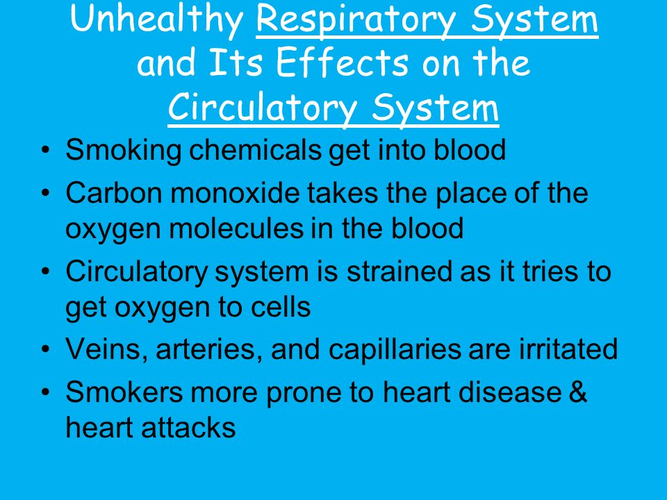 Unhealthy Respiratory System and Its Effects on the Circulatory System