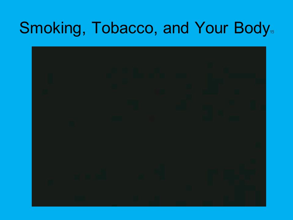 Smoking, Tobacco, and Your Body15