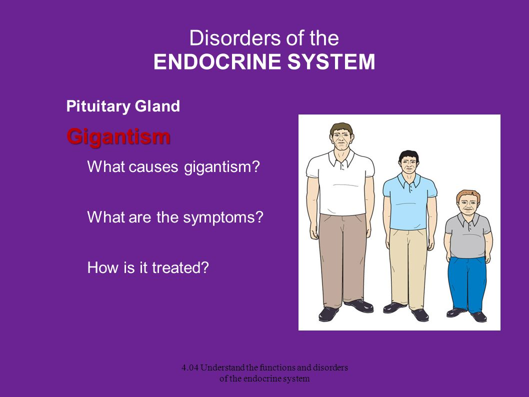 Disorders of the ENDOCRINE SYSTEM